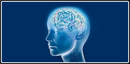Save Oil - Poboljšanje funkcije mozga